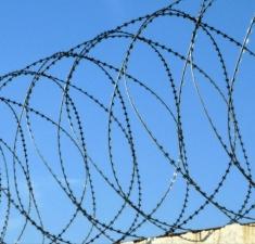 Спиральный барьер безопасности из армированной колючей ленты,бухта 955мм 5 витков в п.м, клепок-5 ГОСТ 3282-74 (20м)